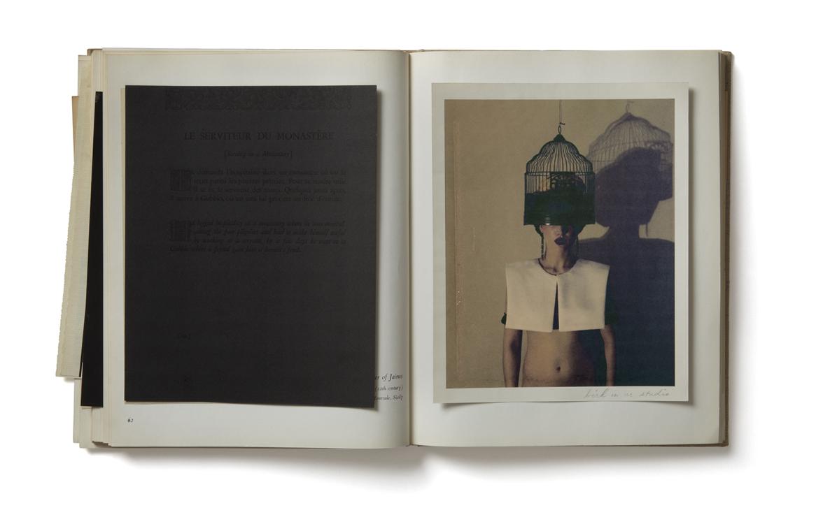 Bird In Ur Studio (Self Portrait from Witch: The Book of Bananas, Forks, Spoons + Heartbreak), 2006