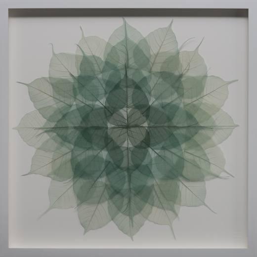 Dark Green Mandala, 2016