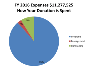 fy16_expenses_chart