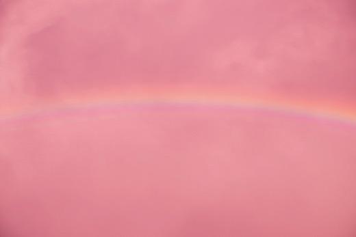 Pink Rainbow, 2019
